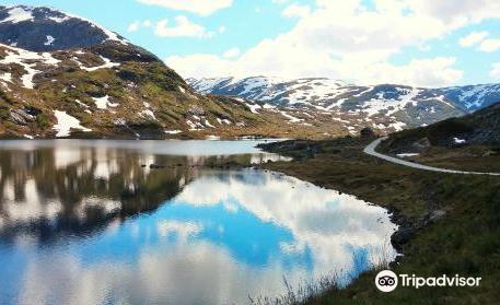 The Three Fjord Ride