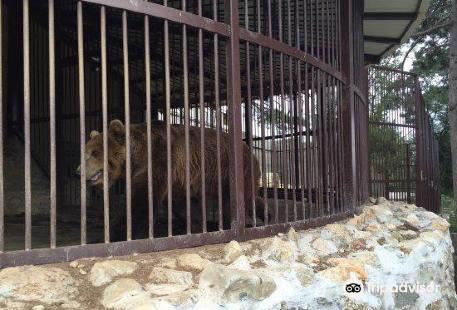Zoo Bitola