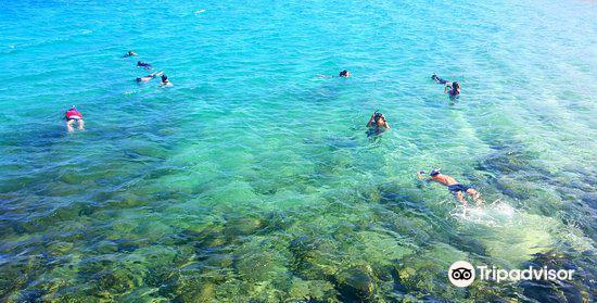 Seaway Kayaking Tours4