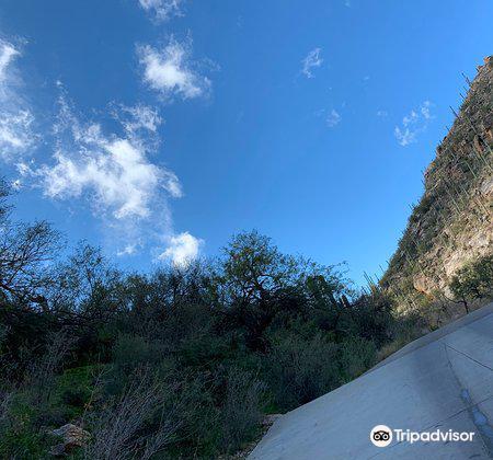 Sabino Canyon4