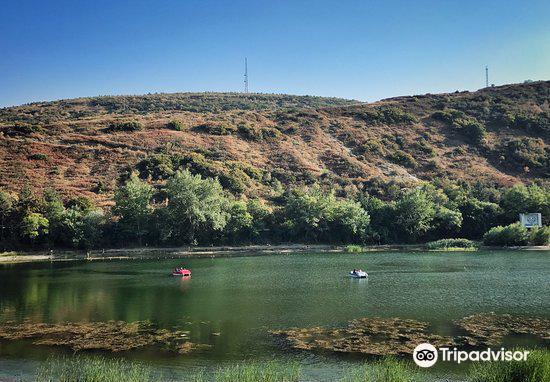 Turtle Lake3