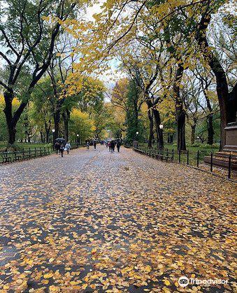 中央公園文學路