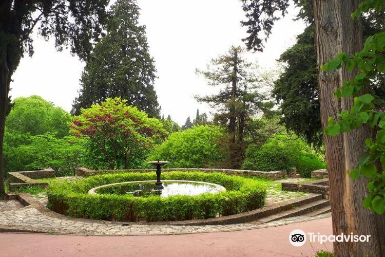 蒙彼利埃植物園1