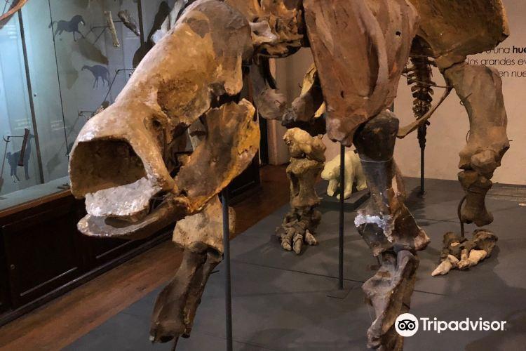 Museo Municipal Dr. Bautista Rebuffo3