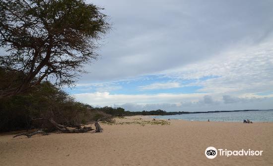 Oneloa Beach2