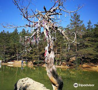 Limni Golu Tabiat Parki
