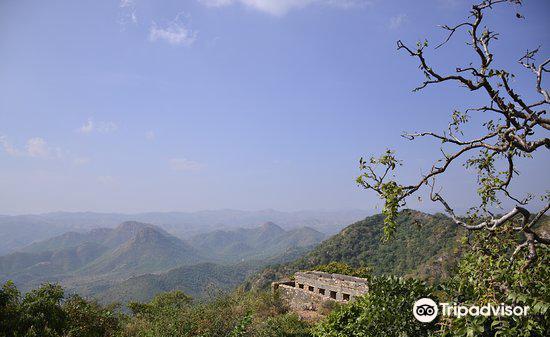Sajjangarh Wildlife Sanctuary1
