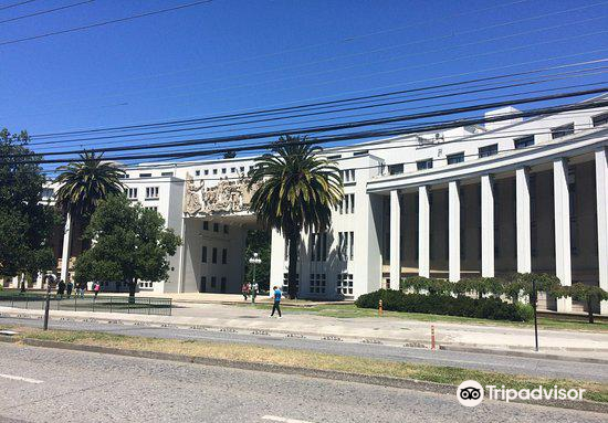 Universidad De Concepcion3