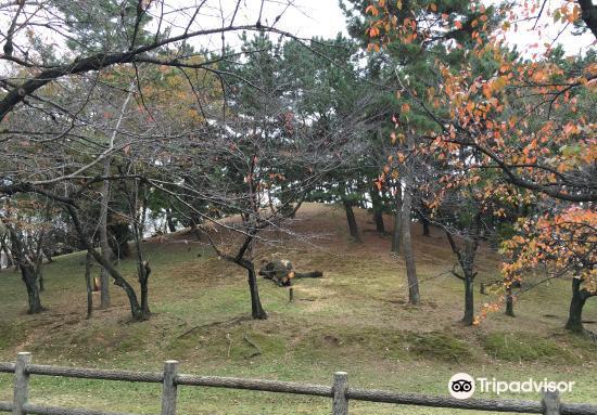 Mt. Hachiman Tomb4