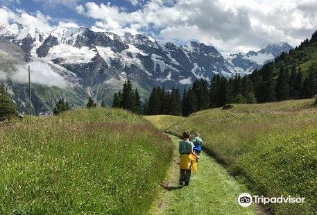 Flower Park and Children's Adventure Trail