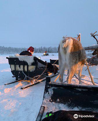 Ounaskievari Reindeer Farm1
