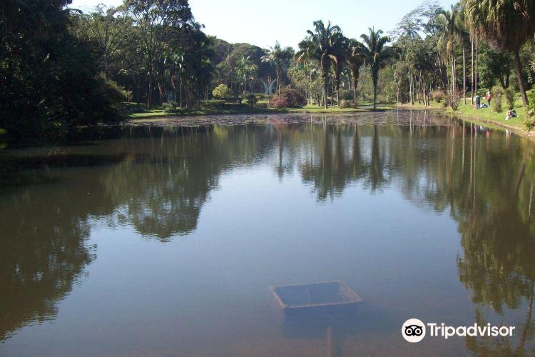 Springs of the Ipiranga State Park4