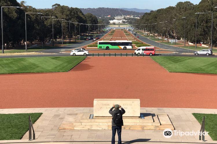 ANZAC Parade Walk4