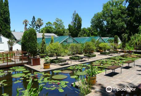 Botanical Garden University of Stellenbosch