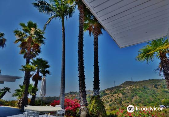 Hollywood Hills4