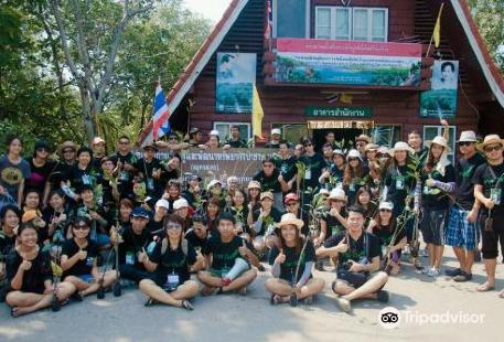 Ao Mahachai Mangrove Forest Natural Education Center