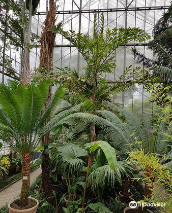 Botanical Garden3