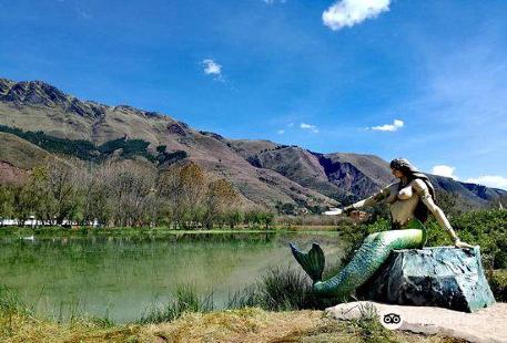 Humedales de Huasao