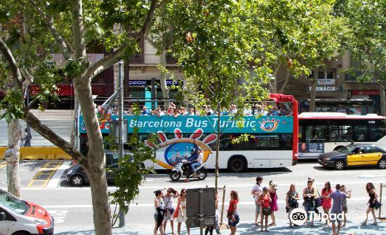 巴賽隆納旅遊巴士2