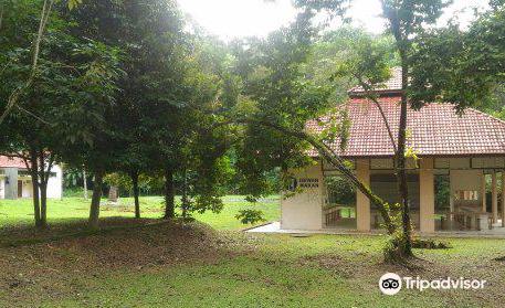 Kuala Woh Recreational Forest