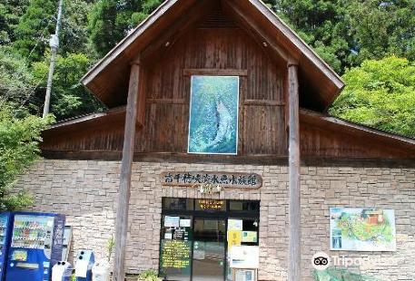 高千穂峽淡水魚水族館