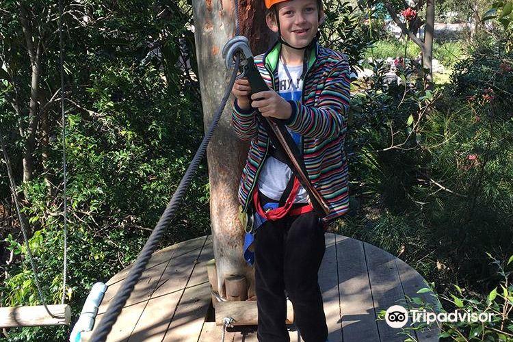 Treetop Adventure Park3