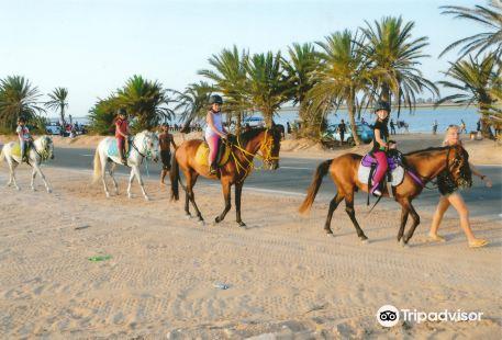 Ranch Adada Djerba