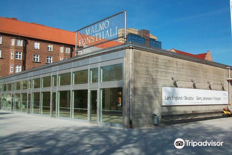 馬爾默藝術畫廊3