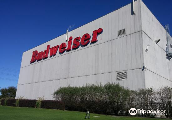 Budweiser Brewery Experience