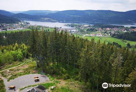 Riesenbuhlturm in Schluchsee