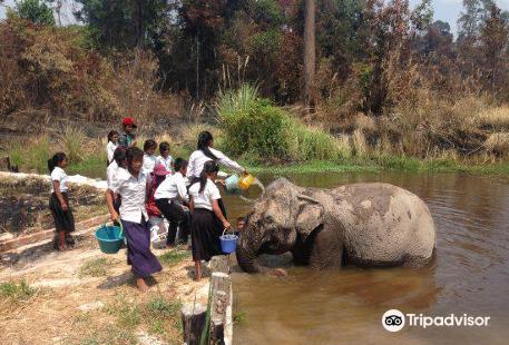 Cambodia Wildlife Sanctuary
