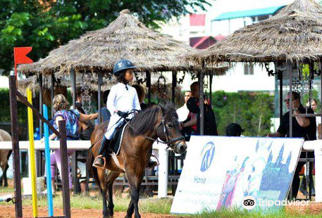 Cambodian Country Club Equestrian Center