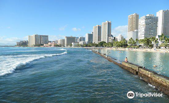 The Kapahulu Groin (Waikiki Wall)1