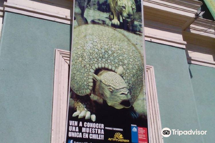 Museoa Regionala Iquique3