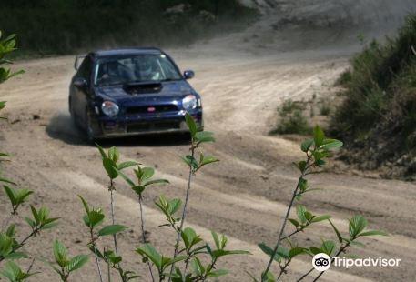 Race Rally 4x4