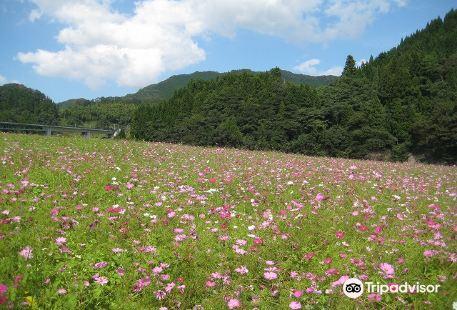 Higashisanbe Flower Valley