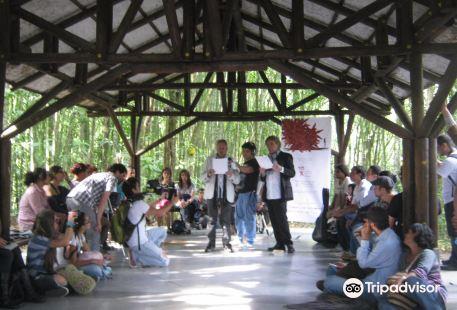 Otun Quimbaya Natural Park