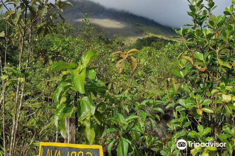 Cerro Chato ANC Park & Gardens3