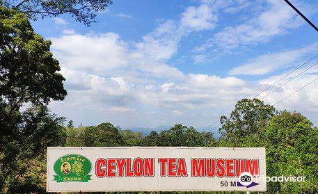 錫蘭茶博物館