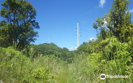 Powerline Trail