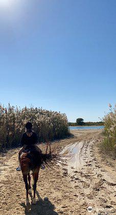 Al Qudra Lake3