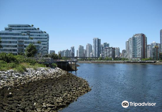 Olympic Village3