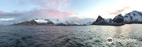 Arctic Adventure Norway