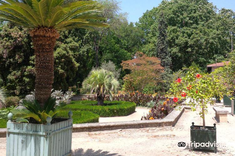 蒙彼利埃植物園2