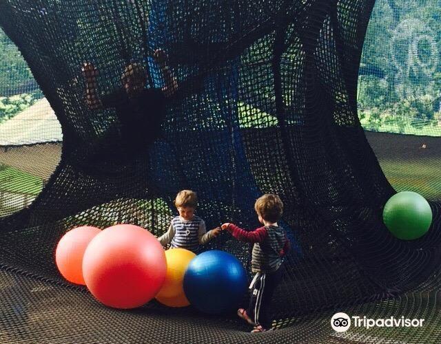 Treetop Nets4