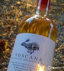 Poggi del Chianti Winery