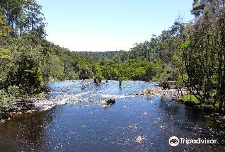 Dip River Forest Reserve