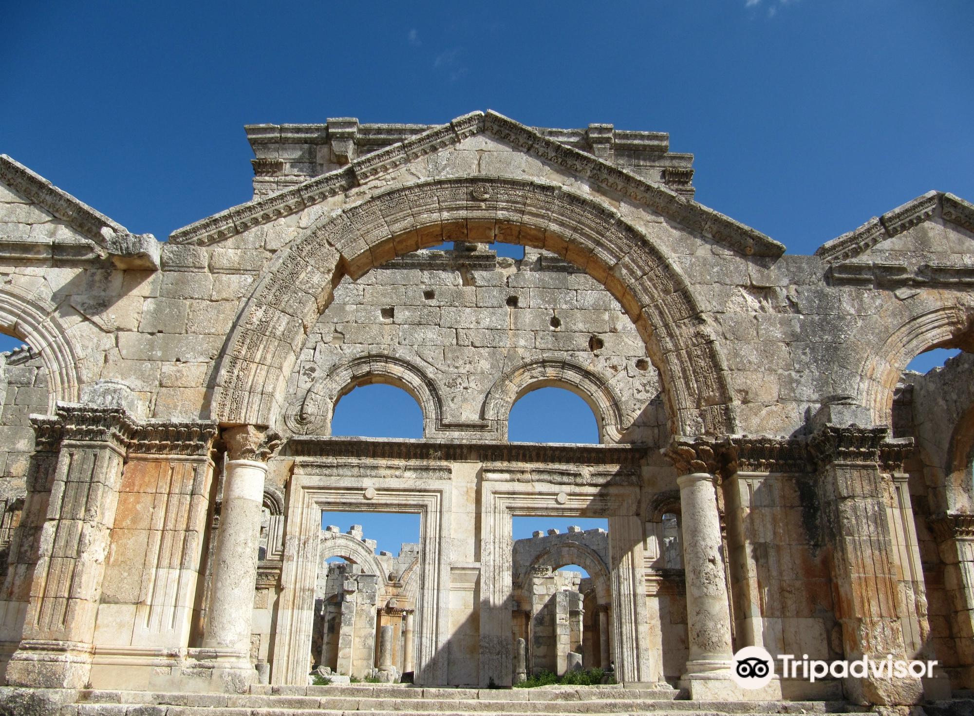Saint Simon Citadel (Sam'an Citadel, Qalat Samaan)