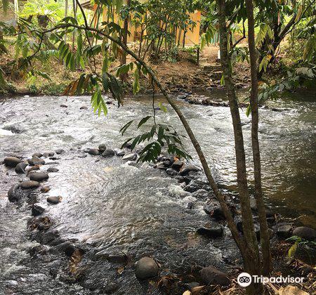 Riverside Janda Baik3
