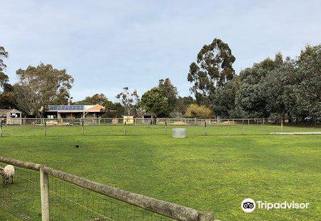 Rain, Hayne and Shine Farmyard